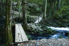 Kleine Brücke über Nebenfluss im Wald Stockbilder