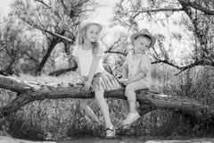 Kleine broer twee en zusterzitting in een boom royalty-vrije stock afbeeldingen