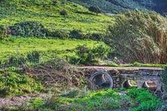 Kleine brug op een groen gebied royalty-vrije stock fotografie