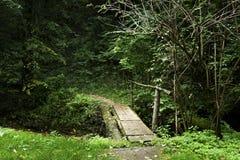 Kleine brug over kreek in het bos Stock Afbeeldingen
