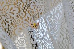 Kleine, bruine vlinder op een wit gordijn stock afbeelding