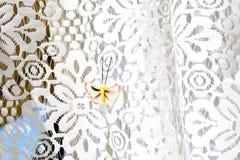 Kleine, bruine vlinder op een wit gordijn stock fotografie