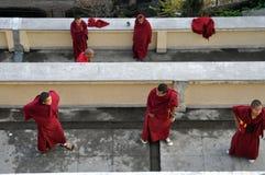 Kleine buddhistische Mönche Stockfotografie