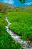 Kleine Dörfer von Region Schwarzen Meers von Anatolien, die Türkei Lizenzfreies Stockbild