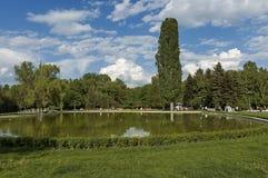 Kleine dam in het mooie Zuidenpark Stock Foto's