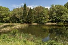 Kleine dam in het mooie Zuidenpark Stock Afbeelding