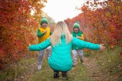 Kleine die jongen twee naar zijn moeder, in de de herfst zonnige dag in werking wordt gesteld royalty-vrije stock afbeelding