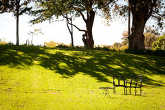 Kleine die picknicklijst in groene tuin wordt geplaatst Royalty-vrije Stock Foto's