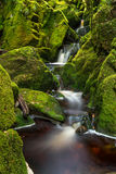 Kleine die waterval door groene bemoste rotsen wordt omringd Stock Afbeeldingen