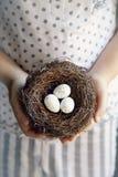Kleine eieren Stock Afbeelding