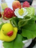 Kleine Ente u. große Erdbeere Stockfotos