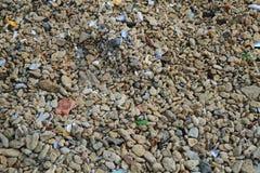 Kleine Farbe entsteint Beschaffenheit vom Strand Stockbilder