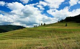Kleine Felder und bewölkter Himmel Stockfoto