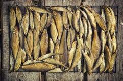 Kleine Fische geraucht Lizenzfreies Stockfoto