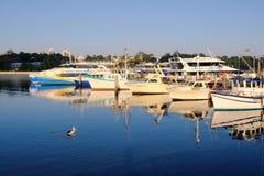 Kleine Fischen-und Tageskreuzfahrt-Boote, Sydney Harbour, Australien Lizenzfreies Stockbild