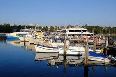 Kleine Fischen-und Tageskreuzfahrt-Boote, Sydney Harbour, Australien Stockfoto