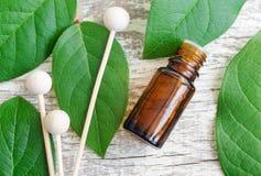 Kleine Flasche ätherisches Öl, Diffusorschilfe und frische Blätter über hölzernem Hintergrund Aromatherapy und Badekurortkonzept lizenzfreies stockbild