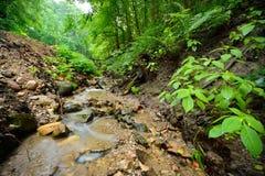 kleine Flussszene unter felsigem Tal Lizenzfreie Stockfotografie