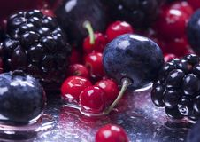 Kleine Früchte Stockbild