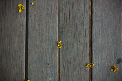 Kleine gelbe Blumen auf hölzernem Hintergrund Stockfotos