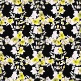 Kleine gelbe Blumen und Niederlassungen des nahtlosen Musters auf dem schwarzen Hintergrund Ausführliche vektorzeichnung watercol Lizenzfreie Stockbilder