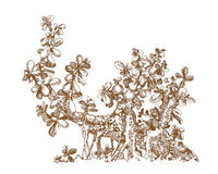 Kleine Geldboom Royalty-vrije Stock Foto