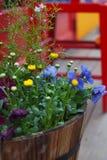 Kleine gele bloemen onder kleurrijke bloemen in donkere bruine ronde houten vaten Op een kleurrijke achtergrond stock fotografie