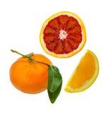 Kleine geschnittene Blutorange, orange Scheibe und ganze Mandarine Stockfotos
