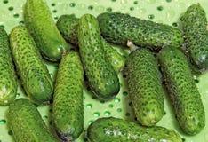 Kleine groene komkommers Royalty-vrije Stock Afbeeldingen