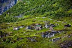 Kleine Häuser mit Grasdächern in Norwegen im Sommer Stockfotografie