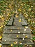 Kleine hölzerne Treppen Stockbild