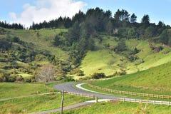 Kleine Hügel mit blühenden Landschaften Lizenzfreie Stockbilder