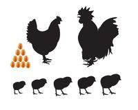 Kleine Hühnerkükeneier Stock Abbildung