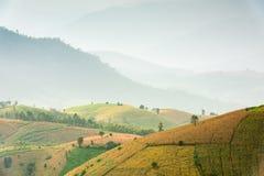 Kleine Hütte, Reisfelder und Berg an Bongpieng-Dorf Stockfotos