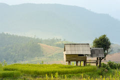 Kleine Hütte, Reisfelder und Berg an Bongpieng-Dorf Lizenzfreie Stockbilder
