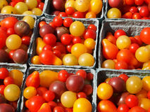 Kleine Heirloom-Tomaten stockbild