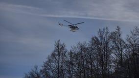 Kleine helikoptervliegen over bomen Royalty-vrije Stock Afbeelding