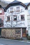 Kleine historische stad Hallstatt in de winter Oostenrijk stock afbeeldingen
