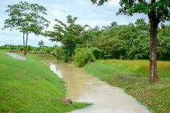 Kleine Holzbrücke über dem Kanal des kleinen Sees durch Garten und Golfplatz mit grünem Gras und konkretem Warenkorbweg lizenzfreie stockbilder