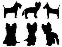 Kleine hondsilhouetten (Yorkshire Terrier en Schna Stock Afbeeldingen