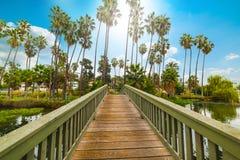 Kleine houten brug in Echo Park-meer in Los Angeles stock afbeeldingen