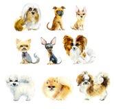 Kleine Hunde der Karikatur Gezeichnete Illustration des Aquarells Hand lizenzfreie abbildung