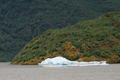 Kleine ijsberg in Mendenhall-Meer, Alaska royalty-vrije stock fotografie