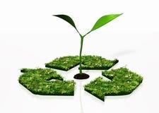Kleine installatie in een recyclingssymbool Stock Afbeeldingen
