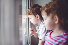 Kleine jonge geitjes die in het venster kijken. royalty-vrije stock foto's