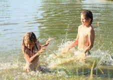 Kleine jonge geitjes in water Stock Fotografie