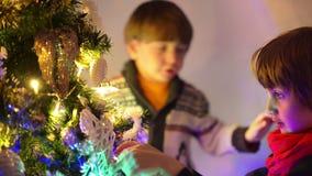 Kleine jongens die Kerstmisboom verfraaien stock videobeelden