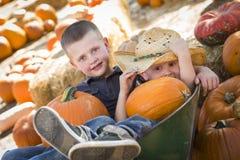 Kleine Jongens die in Kruiwagen bij het Pompoenflard spelen Royalty-vrije Stock Foto