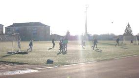 Kleine Jungen, die Fußball auf dem Sportfeld nahe bei Ziel spielen Junge spielt Fußball am Sonnenscheintag stock footage