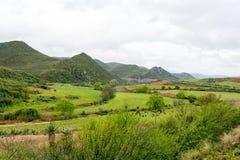 Kleine Karoo, Outshoorn, South Africa Royalty Free Stock Photo